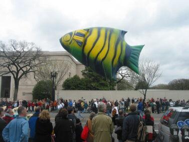 Angel Fish Helium Balloon
