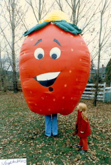 Strawberry Inflatable Costume