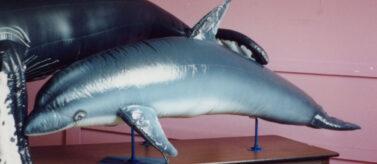 Dolphin Parade Balloon
