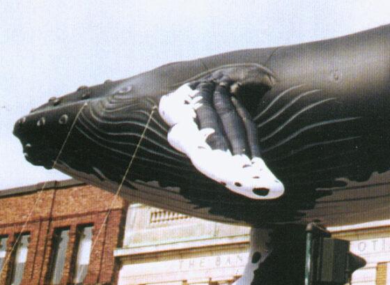Humpback Whale Parade Balloon