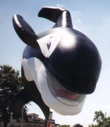 Happy Orca Whale Parade Balloon