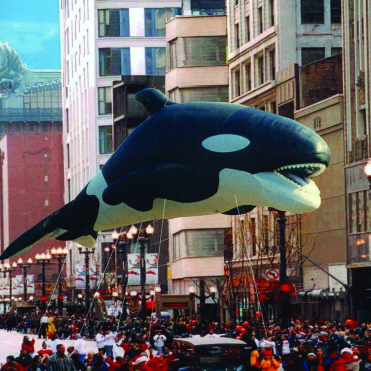 Orca Whale Parade Balloon (Realistic), 45'
