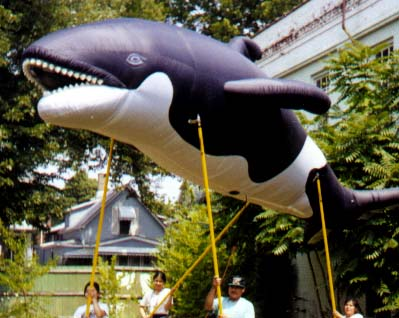 Orca Whale Pole Unit Parade Balloon, 21'