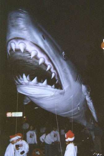 Shark Realistic Parade Balloon, 35'