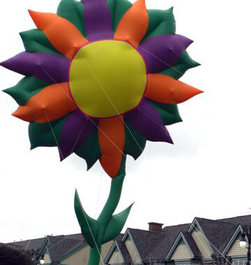 Sunflower Parade Balloon, 35'