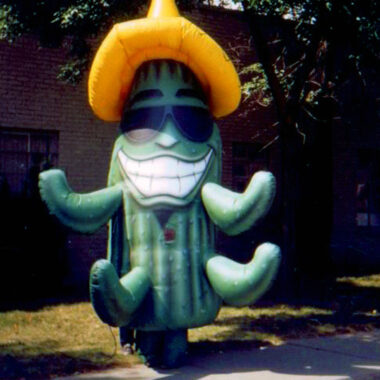 Cactus Inflatable Costume